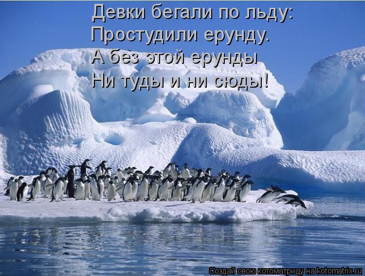 Котоматрица: Девки бегали по льду:  Простудили ерунду.  А без этой ерунды  Ни туды и ни сюды!
