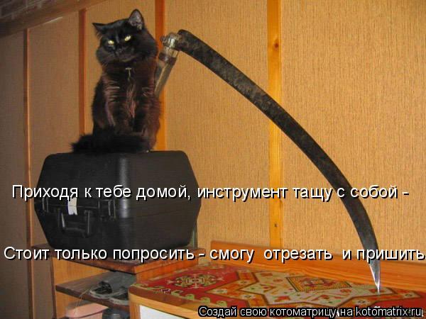 Котоматрица: Приходя к тебе домой, инструмент тащу с собой -  Стоит только попросить - смогу  отрезать  и пришить.