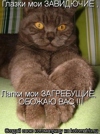 Котоматрица: Глазки мои ЗАВИДЮЧИЕ , Лапки мои ЗАГРЕБУЩИЕ,  ОБОЖАЮ ВАС !!!