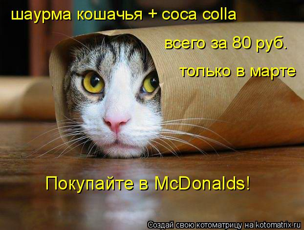 Котоматрица: всего за 80 руб. только в марте шаурма кошачья + coca colla Покупайте в МcDonalds!