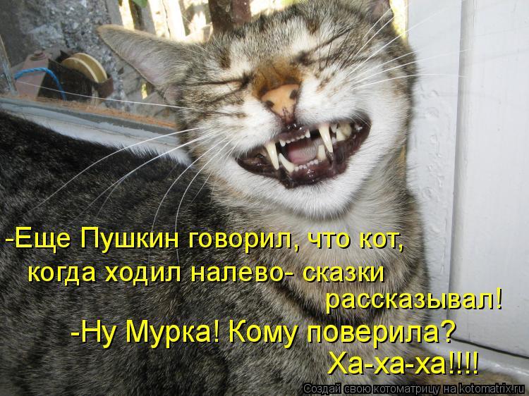 Котоматрица: -Еще Пушкин говорил, что кот,  когда ходил налево- сказки  рассказывал! -Ну Мурка! Кому поверила?  Ха-ха-ха!!!!
