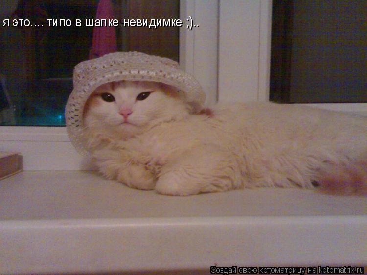 Котоматрица: я это.... типо в шапке-невидимке ;)..