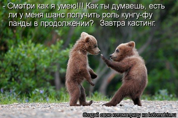 Котоматрица: - Смотри как я умею!!! Как ты думаешь, есть  ли у меня шанс получить роль кунгу-фу  панды в продолжении? Завтра кастинг.