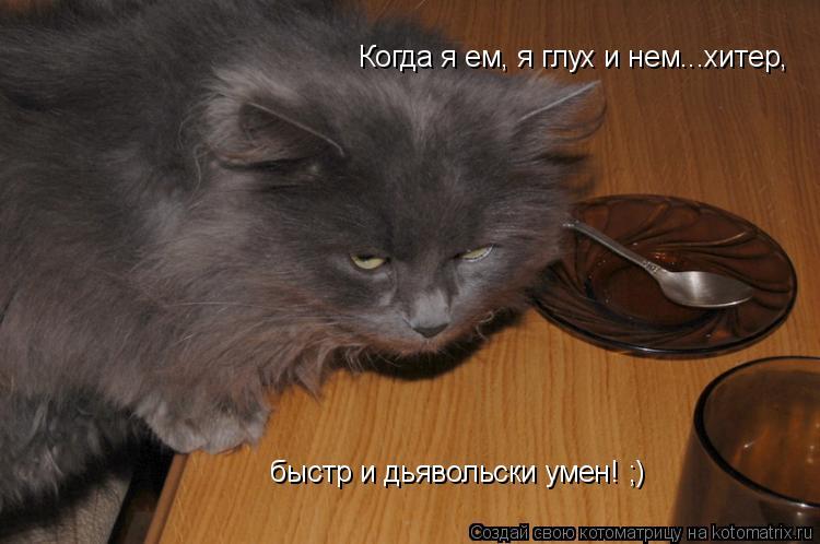 Котоматрица: Когда я ем, я глух и нем...хитер, быстр и дьявольски умен! ;)