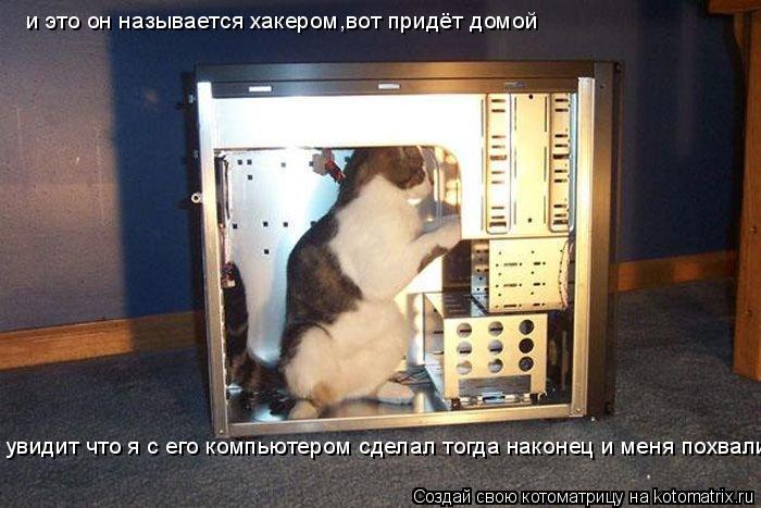 Котоматрица: и это он называется хакером,вот придёт домой  увидит что я с его компьютером сделал тогда наконец и меня похвалит
