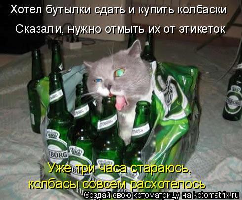 Котоматрица: Хотел бутылки сдать и купить колбаски Сказали, нужно отмыть их от этикеток Уже три часа стараюсь,  колбасы совсем расхотелось