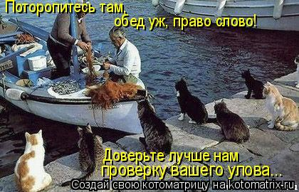 Котоматрица: Поторопитесь там,  обед уж, право слово! Доверьте лучше нам  проверку вашего улова...