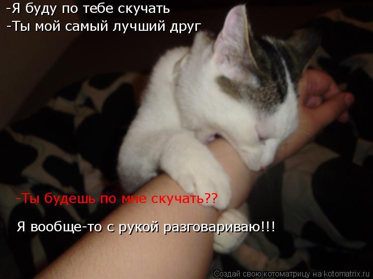 Котоматрица: -Я буду по тебе скучать -Ты мой самый лучший друг -Ты будешь по мне скучать?? Я вообще-то с рукой разговариваю!!!