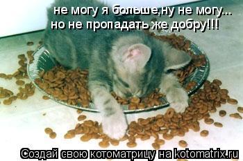 Котоматрица: не могу я больше,ну не могу... но не пропадать же добру!!!