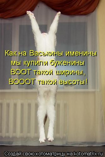 Котоматрица: Как на Васькины именины мы купили буженины ВООТ такой ширины, ВОООТ такой высоты!