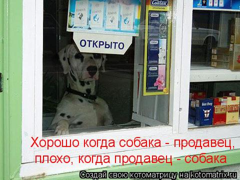 Котоматрица: Хорошо когда собака - продавец, плохо, когда продавец - собака  плохо, когда продавец - собака