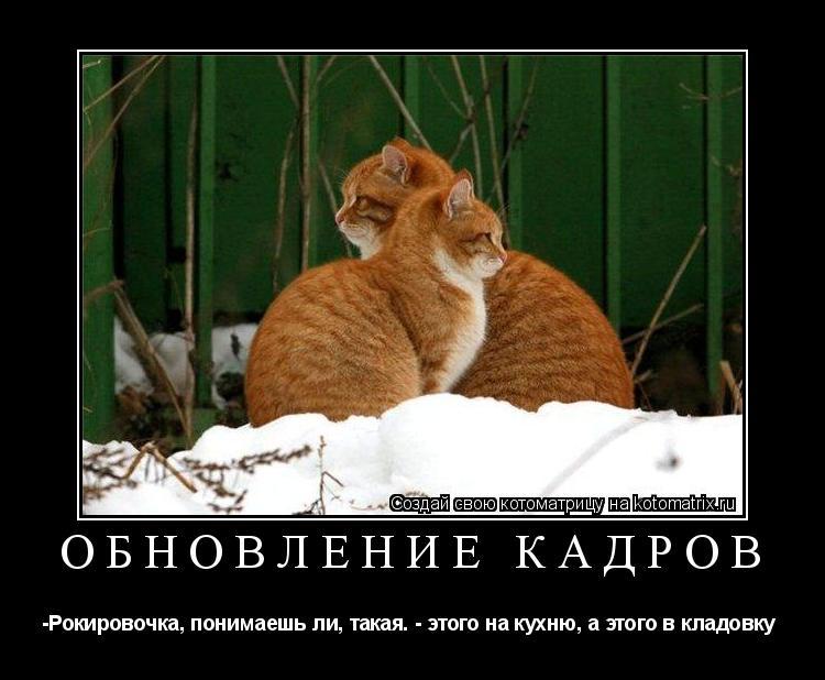http://kotomatrix.ru/images/lolz/2009/03/22/b3_.jpg