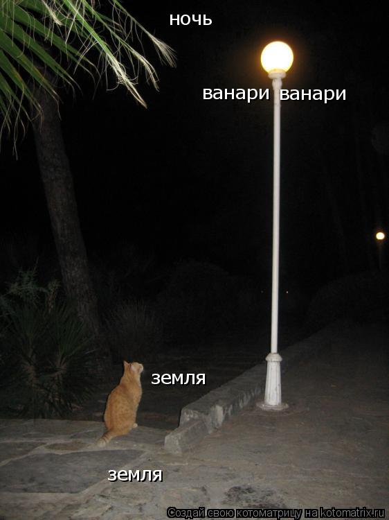 Котоматрица: ночь ванари ванари земля земля