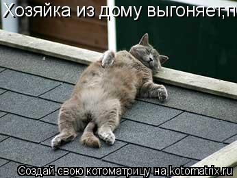 Котоматрица: Хозяйка из дому выгоняет,полежу на крыше,пока От дяде Гриши не получил вениеом по бошке...