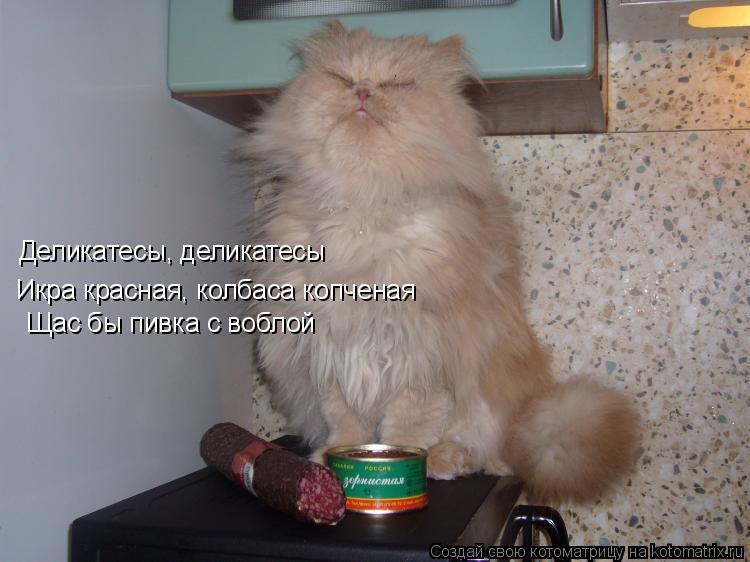 Котоматрица: Икра красная, колбаса копченая Щас бы пивка с воблой Деликатесы, деликатесы