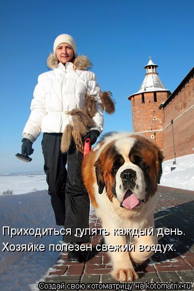 Котоматрица: Приходиться гулять каждый день. Хозяйке полезен свежий воздух.