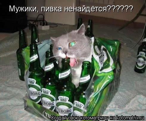 Котоматрица: Мужики, пивка ненайдётся??????