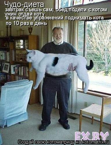 Котоматрица: Чудо-диета завтрак съешь сам, обед подели с котом ужин отдай коту в качестве упражнений поднимать кота по 10 раз в день