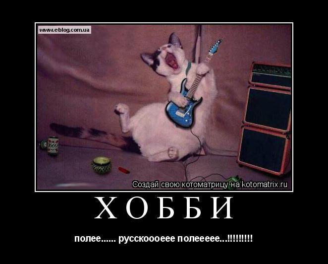 Котоматрица: хобби полее...... русскоооеее полеееее...!!!!!!!!!