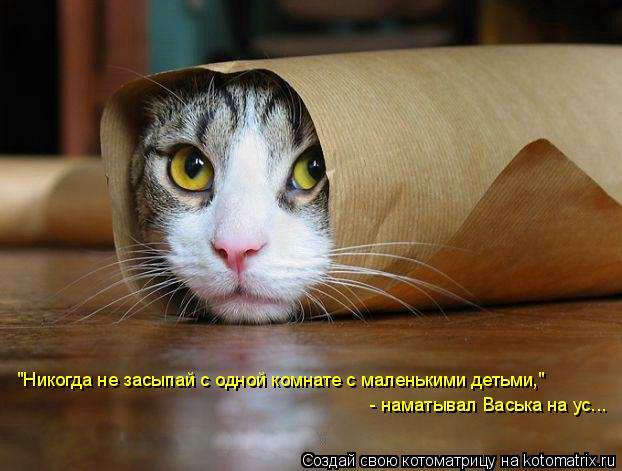 """Котоматрица: """"Никогда не засыпай с одной комнате с маленькими детьми,""""  - наматывал Васька на ус..."""