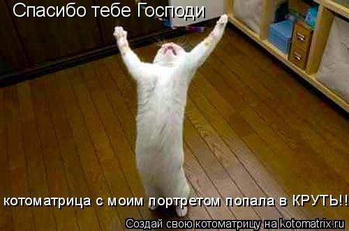 Котоматрица: Спасибо тебе Господи котоматрица с моим портретом попала в КРУТЬ!!!!