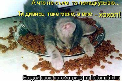 Котоматрица: А что не съем, то понадкусывю... Ти дивись, таке мале, а вже  - хохол!