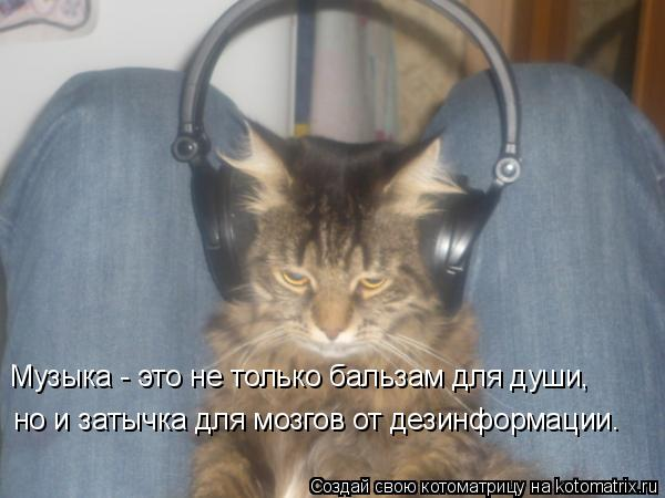 Котоматрица: Музыка - это не только бальзам для души,  но и затычка для мозгов от дезинформации.