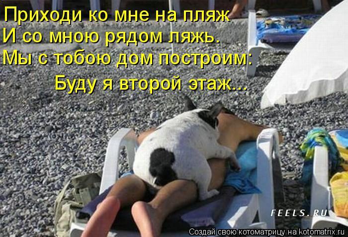 Котоматрица: Приходи ко мне на пляж  И со мною рядом ляжь.  Мы с тобою дом построим:  Буду я второй этаж...