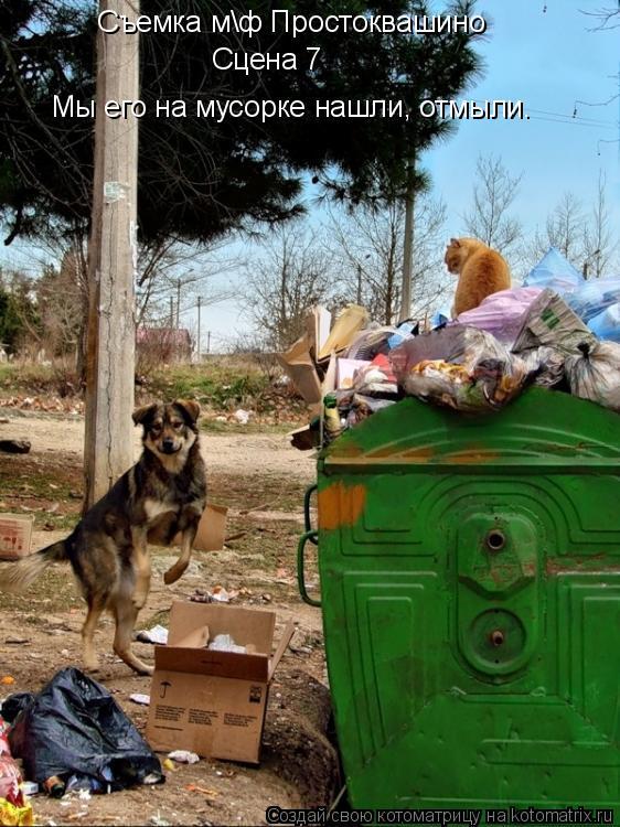 Котоматрица: Съемка мф Простоквашино Сцена 7 Мы его на мусорке нашли, отмыли.