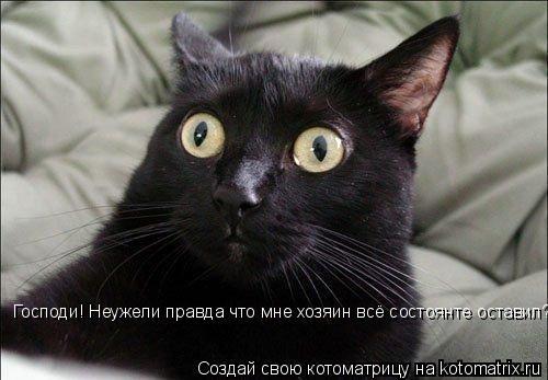 Котоматрица: Господи! Неужели правда что мне хозяин всё состоянте оставил?