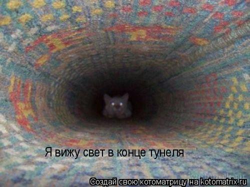 Котоматрица: Я вижу свет в конце тунеля