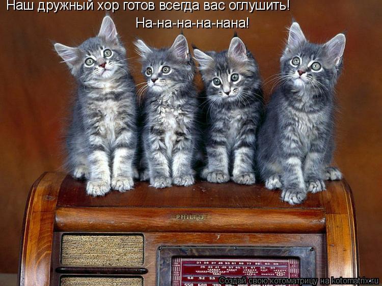 Котоматрица: Наш дружный хор готов всегда вас оглушить! На-на-на-на-нана!