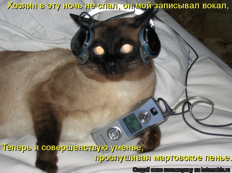 Котоматрица: Хозяин в эту ночь не спал, он мой записывал вокал, Теперь я совершенствую уменье,  прослушивая мартовское пенье.