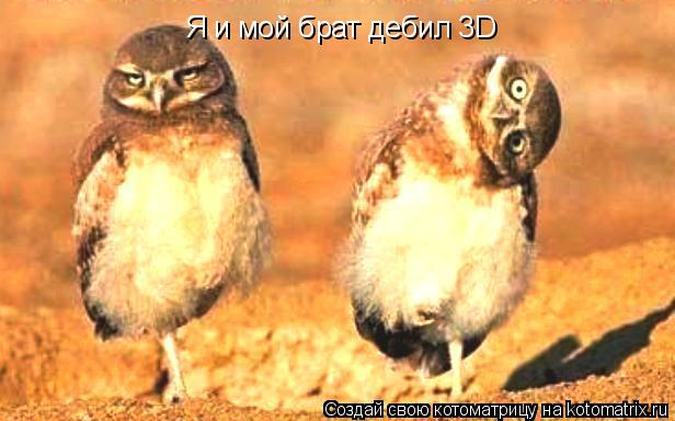Котоматрица: Я и мой брат дебил 3D