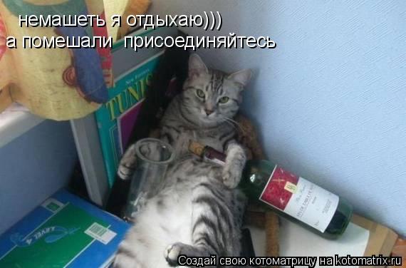 Котоматрица: немашеть я отдыхаю)))  а помешали  присоединяйтесь