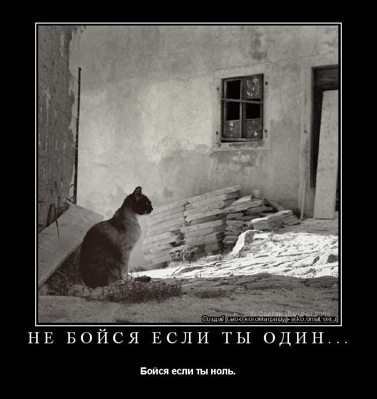 Котоматрица: Не бойся если ты один... Бойся если ты ноль.