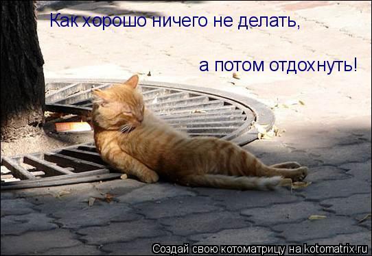 Котоматрица: Как хорошо ничего не делать, а потом отдохнуть!