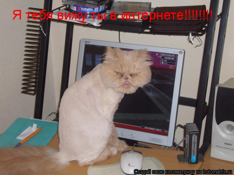 Котоматрица: Я тебя вижу ты в интернете!!!!!!!!