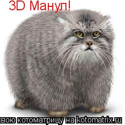Котоматрица: 3D Манул!
