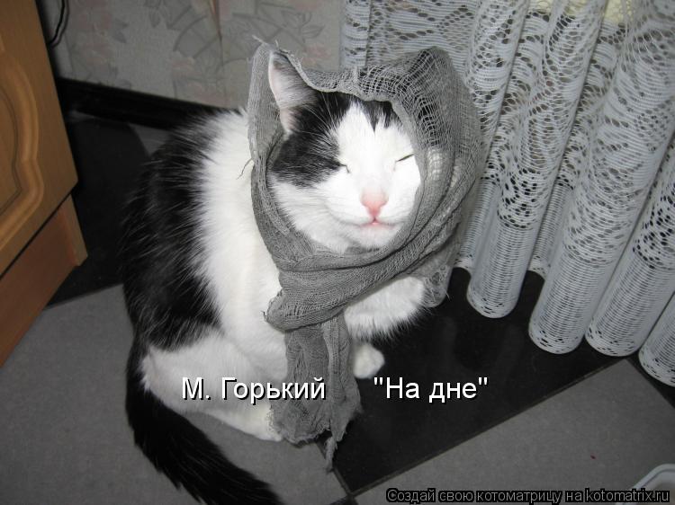 "Котоматрица: М. Горький      ""На дне"""