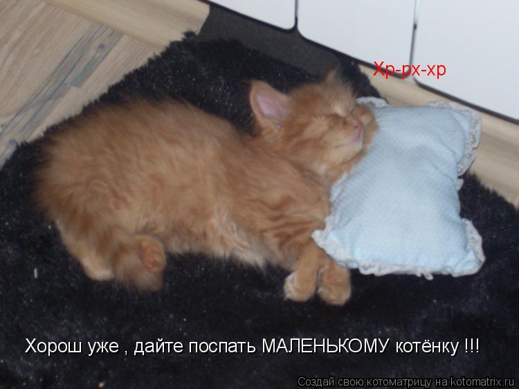 Котоматрица: Хорош уже , дайте поспать МАЛЕНЬКОМУ котёнку !!! Хр-рх-хр