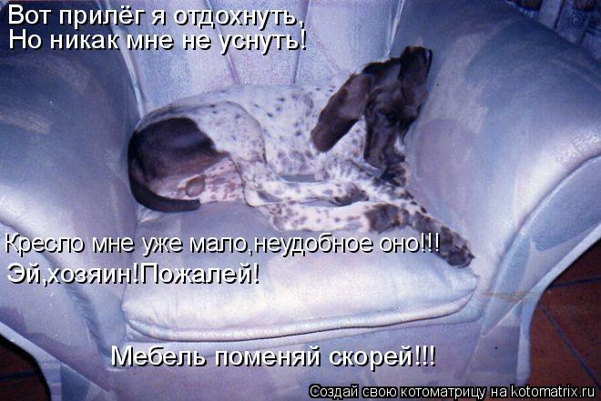 Котоматрица: Вот прилёг я отдохнуть, Но никак мне не уснуть! Кресло мне уже мало,неудобное оно!!! Эй,хозяин!Пожалей! Мебель поменяй скорей!!!
