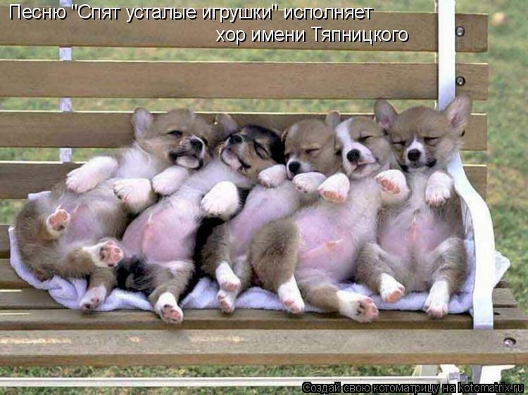 """Котоматрица: Песню """"Спят усталые игрушки"""" исполняет  хор имени Тяпницкого"""