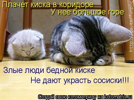 Котоматрица: Плачет киска в коридоре У нее большое горе Злые люди бедной киске Не дают украсть сосиски!!!