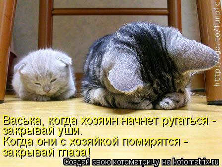Котоматрица: закрывай глаза! Когда они с хозяйкой помирятся -  закрывай уши. Васька, когда хозяин начнет ругаться -