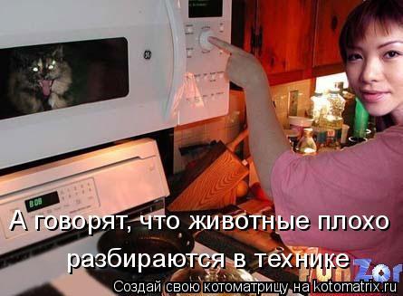 Котоматрица: А говорят, что животные плохо разбираются в технике