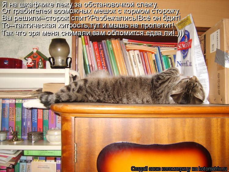 Котоматрица: Я на шкафчике лежу,за обстановочкой слежу. От грабителей возможных мешок с кормом сторожу. Вы решили--сторож спит?Разбежались!Всё он бдит! Т
