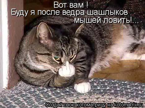 Котоматрица: Вот вам ! Буду я после ведра шашлыков мышей ловить!...