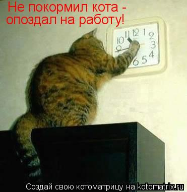 Котоматрица: Не покормил кота - опоздал на работу!