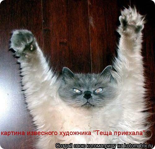 "Котоматрица: картина извесного художника ""Теща приехала"""